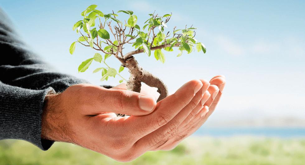 Møljøansvar, ProGlue er miljø bevidste